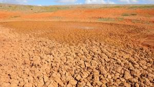 Il cambiamento climatico frena lo sviluppo dell'Africa