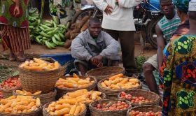 Cibo Africa